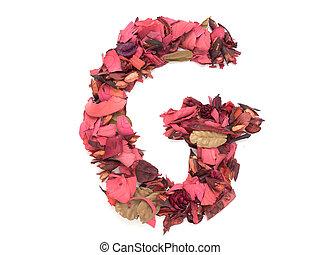 G capital alphabet