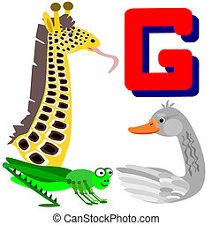 G goose, giraffe and grasshopper
