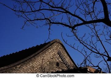 gałęzie drzewa, zmarły, poddasze