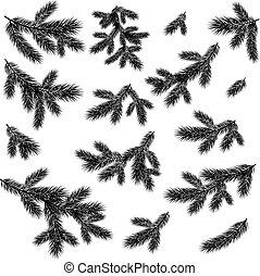 gałęzie, drzewo, sylwetka, czarnoskóry, świerk, boże narodzenie