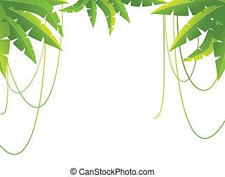 gałęzie, tropikalny