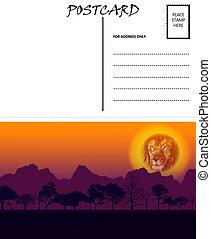 gabarit, coucher soleil, motif, afrique, vide, vide, carte postale