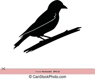 gabarit, moineau, -, conception, vecteur, silhouette, logo, illustration, oiseau