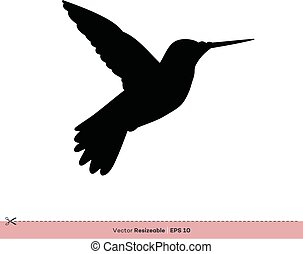 gabarit, oiseau, -, conception, vecteur, silhouette, logo, illustration, colibri