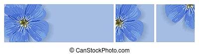gabarit, printemps, flowers., cartes, discounts., design.., bleu, ensemble, forget-me-nots., publicité, arrière-plans, été, salutation