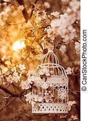 gabbia, decorazione, -, uccello, romantico