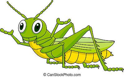 gafanhoto, verde, caricatura