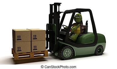 gaffeltruck transportera, sköldpadda, drivande