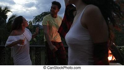 gai, groupe, gens, communication, danse, forêt tropicale, été, terrasse, barbecue, fête, amis, avoir