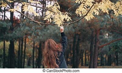gai, peu, mignon, rigolote, arbre, feuilles, parc, larmes, jaune, automne, surprenant, girl
