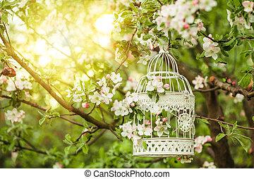 gaiola, decoração, -, pássaro, romanticos