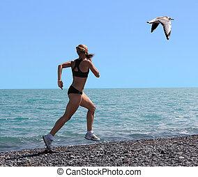 gaivota, exercitar, mulheres