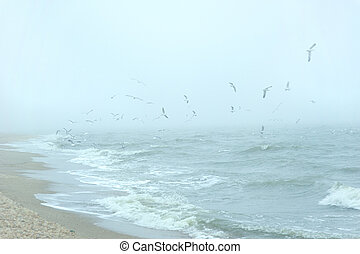 gaivotas, sobre, a, mar