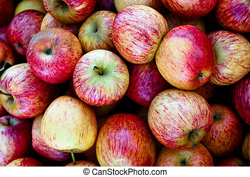 Fresh Gala apples at a farmers' market