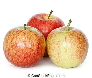 gala apples - three gala apples