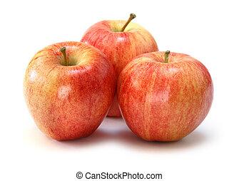 gala, pommes