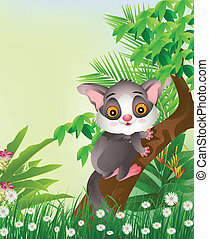 Galago on tree