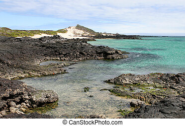 Galapagos Shoreline - The beatiful shoreline of the...