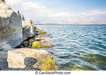 galilee, イスラエル, 海の 海岸