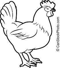 galinha, ilustração