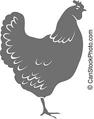 galinha, isolado, branco, fundo, vetorial