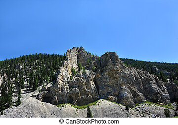 Gallatin Ridge