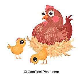 gallina, sentado, vector, ilustración, ambulante, huevos, polluelos, cerca