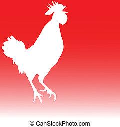 gallo, blanco, ilustración