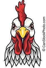 gallo, mascota, pollo, cabeza