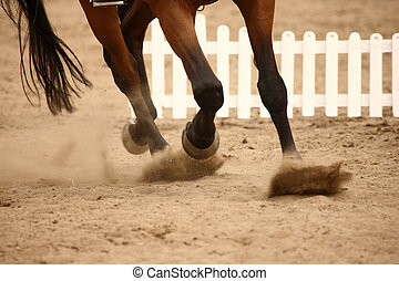A close up of horse hooves in gallop on the sand