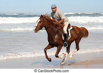 Galloping brown horse and rider at the beach