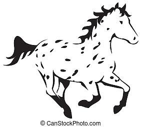 Leopard Appaloosa - Galloping Leopard Appaloosa Horse