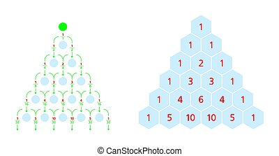 galton, distribution, triangle, normal, pascals, planche