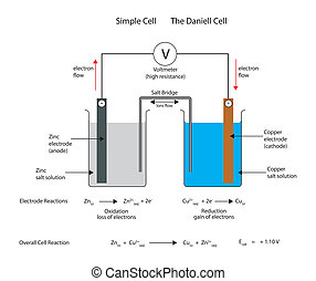 galvanic, daniell, electrochemical, o, cell., simple