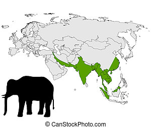 gama, elefante asiático