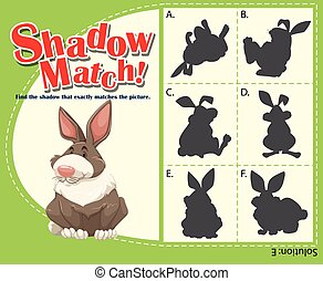 Game template with matching rabbit