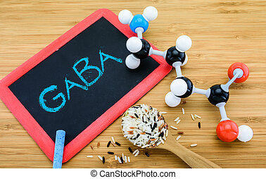 gamma-aminobutyric, germinated, (gaba), ris, sur