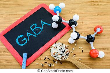 gamma-aminobutyric, sur, (gaba), in, germinated, ris
