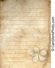 gammal, grunge, papper, vita blomma, tryck