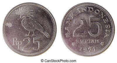 gammal, sällsynt, mynt, av, indonesien