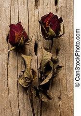 gammal, Trä,  rosÈ, bakgrund, torkat, Årgång, stil