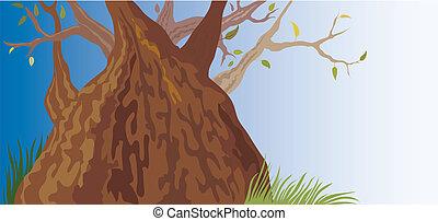 gammalt träd, (vector)