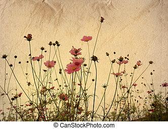 gammeldags, kunstneriske, blomst