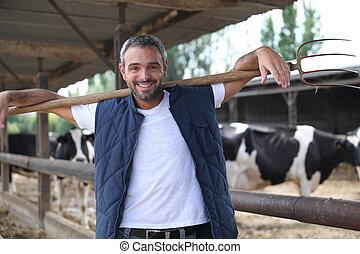 ganado, granja