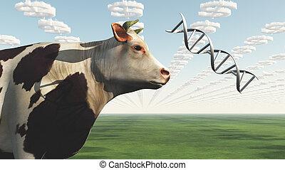 ganancia, grande, gmo, empresa / negocio, vaca