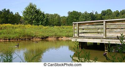 gansos, y, puente