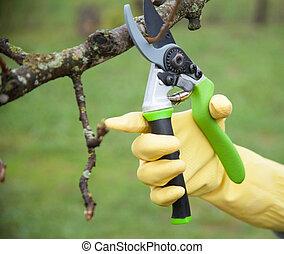 gants travail, jardinier, entretien, mains
