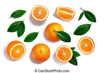 ganz, pfade, oberseite, blätter, split, orangen, ansicht