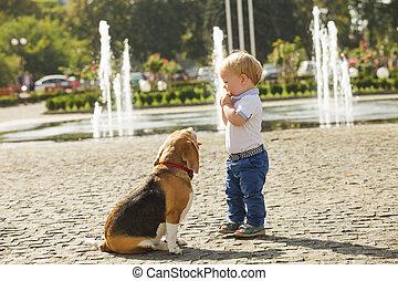 garçon, alimentation, chien