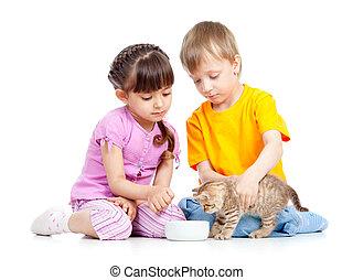 garçon, alimentation, séduisant, chaton, girl, enfants